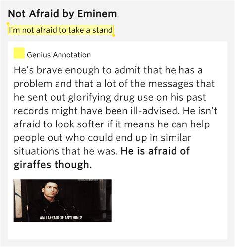 eminem not afraid lyrics i m not afraid to take a stand not afraid by eminem