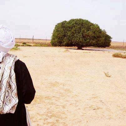 Sejarah Hidup Nabi Muhammad Dan Para Sahabat Ibnu Qoyyim Al Jauzai 1 sahabat nabi yang masih hidup kecintaan dan kasih sayang