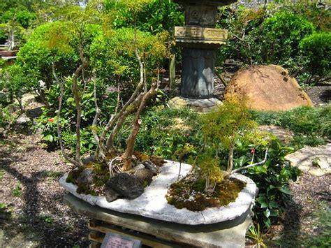 Japanese Gardens Florida by Morikami Museum Japanese Gardens Delray Fl 235