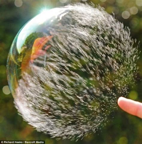 the bubble isn t bursting 6 reasons why it is still can we pop bubbles before they burst the atlantic