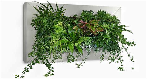 como hacer jardines verticales interiores ideas para hacer jardines verticales con plantas de interior