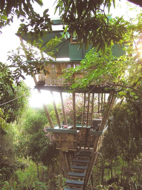 tree houses for rent best 25 tree houses for rent ideas on pinterest