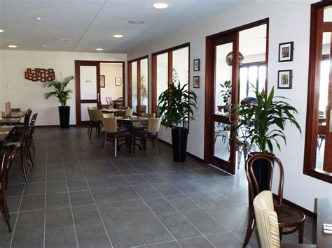 Living Decor Hire Plants Whangarei Hire Plants For Hospitality Living Decor Indoor Plant