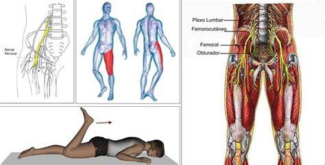 infiammazione inguine e interno coscia cruralgia e lombocruralgia
