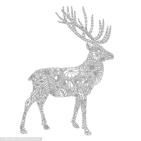 coloring pages for adults deer queen of colouring books artist sells 500k copies to