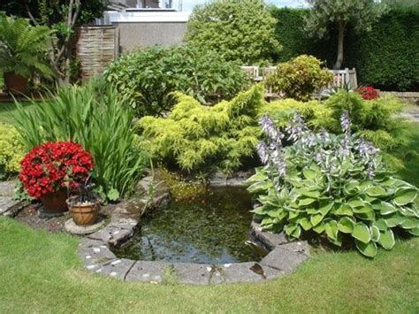 small backyard garden mini pond design no diy just