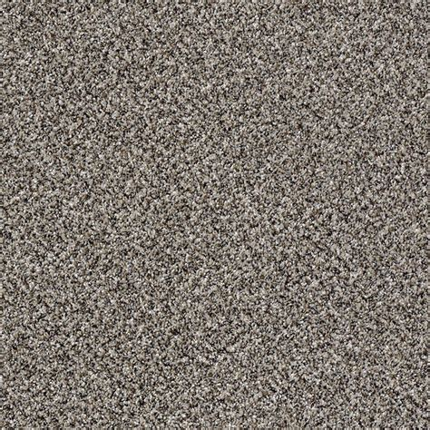 home decorators collection carpet sle wholehearted ii color vanilla frost twist 8 in x 8 home decorators collection carpet sle wholehearted ii