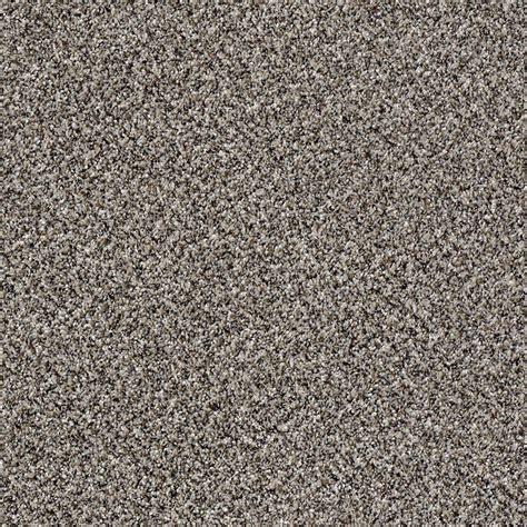 home decorators carpet home decorators collection carpet sle wholehearted ii