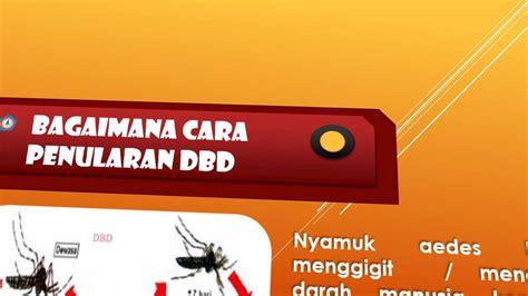 Stop Demam Berdarah Dengue demam berdarah dengue dbd