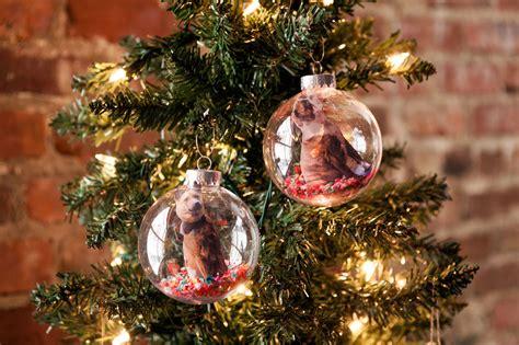 holiday diy ideas  pet lovers brit