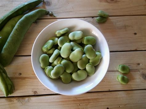 come cucinare le fave fresche con la buccia congelare le fave fresche cucina serafina