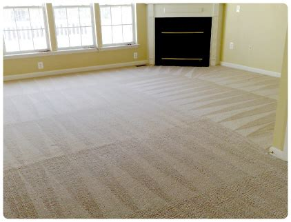 Hagopian Rug Cleaning by Sears Carpet And Air Duct Cleaning Images Green Carpet