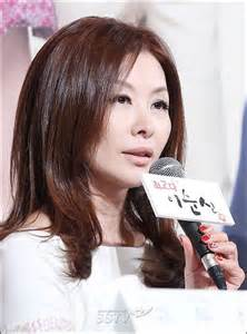 lee mi sook i korean actress hancinema the lee mi sook 이미숙 korean actress scriptwriter