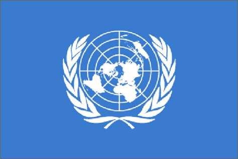 united nations in south africa un task force established to carry out probe