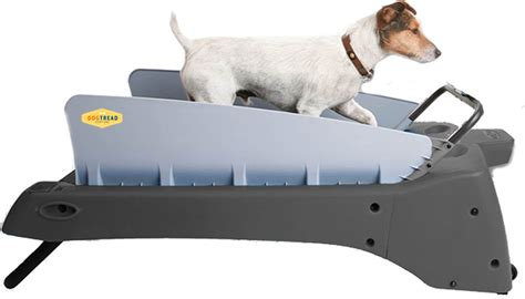 small treadmill small treadmills premium k9 fitness equipment for small breed dogs 5 approved