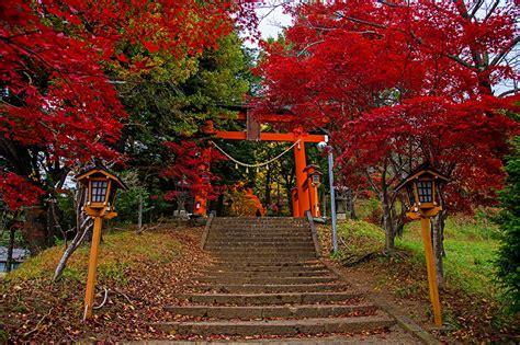 imagenes de japon para fondo de pantalla fondos de pantalla jap 243 n fujiyoshida escalera 225 rboles