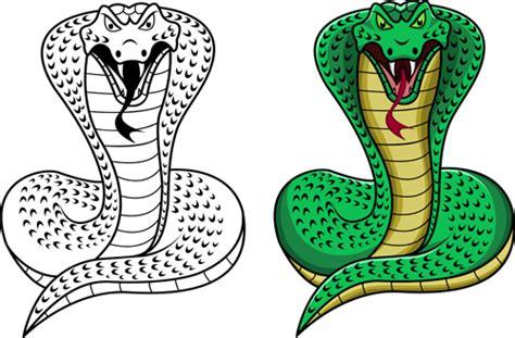 vector set of snake skin pattern elements 01 over set of snake new year design elements vector 01 vector