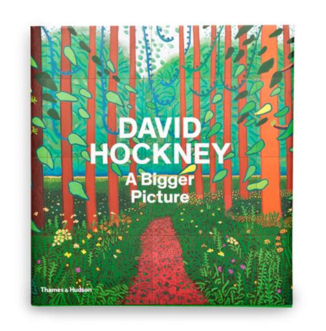 david hockney a bigger picture book books
