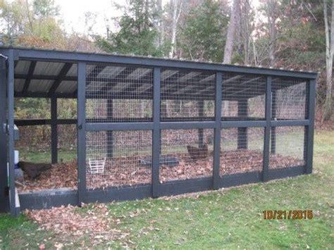 tips  designing  custom chicken run  yard farm