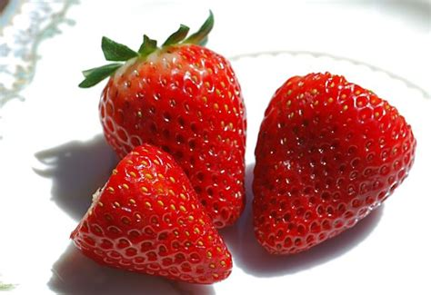 seed of the week strawberries growing with science blog