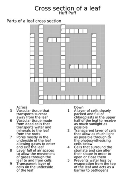 Section Crossword Clue by Label A Cross Section Of The Earth By Rmr09 Uk Teaching