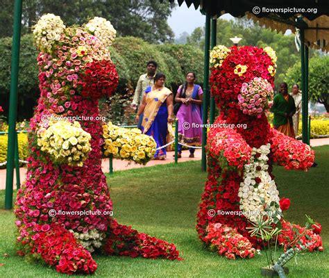 floral garden flowers ooty garden flower show and varieties