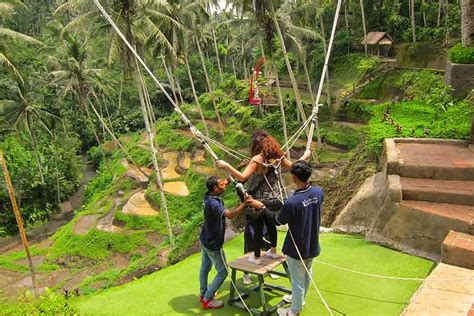 swing bali bali s jungle swings will give you a high