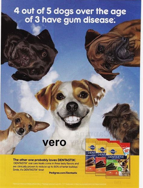 puppy ads 2013 magazine ad pedigree quot dentastix quot teeth advertisement print 5 dogs teeth