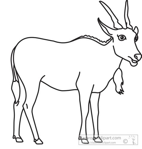 Animal Outlines For by Gallery For Gt Animal Outline Clipart