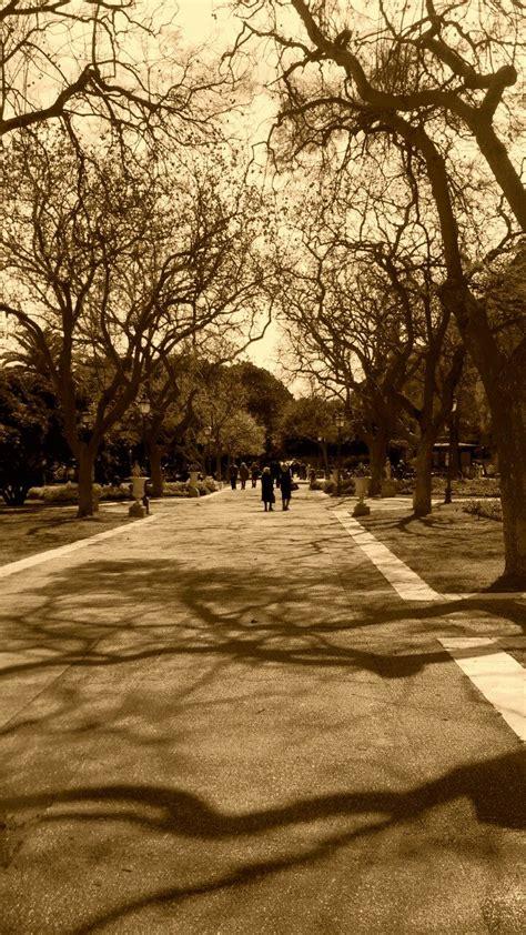 giardini pubblici cagliari sardinia12