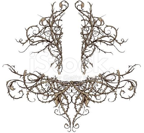 thorn vine tattoo designs thorns search ornamental
