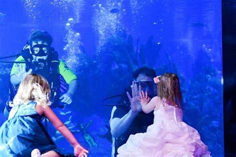 Wishes Wedding Spotlight: Katie & Fred   Disney Wedding Podcast