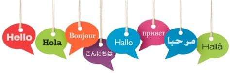 Translate Background Check To Translation Service Professional Translation From German Japanese
