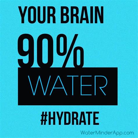 hydration and brain function202020201020303020102020200 02 hydration tips brought to you by the waterminder app