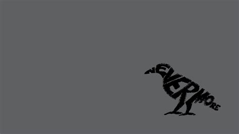 wallpaper dark bird animal full hd wallpaper and background image 1920x1080