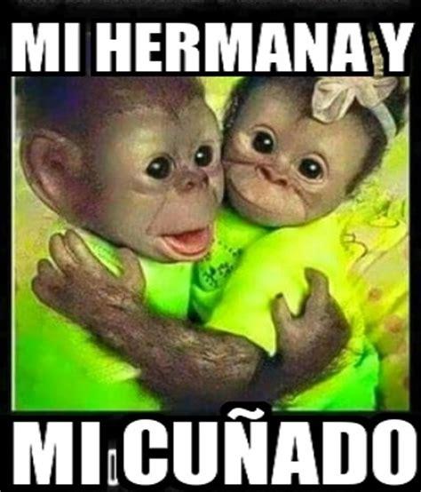 im 193 genes de monos chistosos con frases im 225 genes de monos con frases para hacer bromas chistes