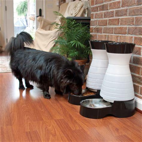 vet recommended food vet recommended pet food brands petsafe 174 articles