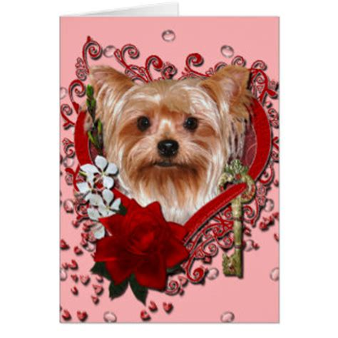 my yorkie puppy terrier gifts on zazzle