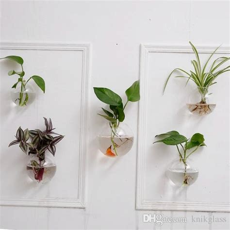 glass wall planters hanging wall air plants bread