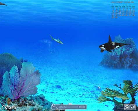 best fish screensaver best 25 aquarium screensaver ideas on