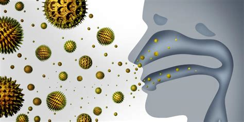 air pollution decreases bacteria in our airways study shows the green optimistic