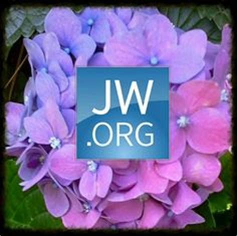 jw org logo art 1000 images about jw org on pinterest jehovah witness