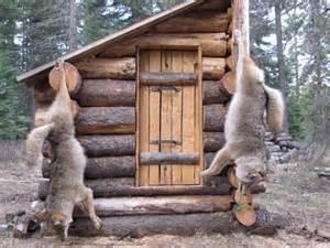 Good Build A Small Log Cabin #2: 52cdc1c488d06f3fe70aeeafb43d5bc6.jpg