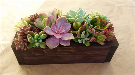 succulent planter box 9 succulent planter box centerpiece mother s day