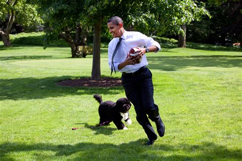 the family puppy file barack obama runs away from the family 2009 05 12 jpg simple