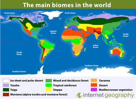 biome internet geography
