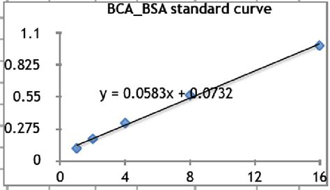 bca quantification bca kit from thermo fisher for protein quantification