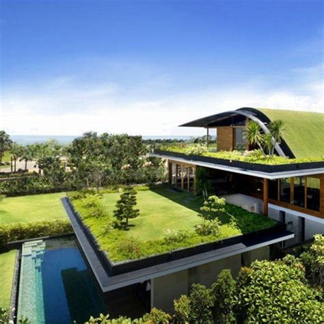 green housing design best 25 green roofs ideas on pinterest green roof