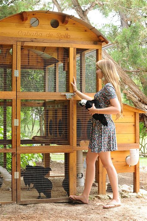 building a backyard chicken coop 1000 ideas about chicken coop designs on