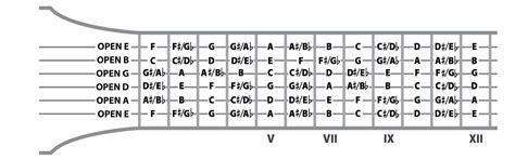 guitar fretboard notes diagram guitar fretboard notes